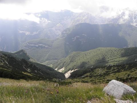 Bilder für Wikipedia