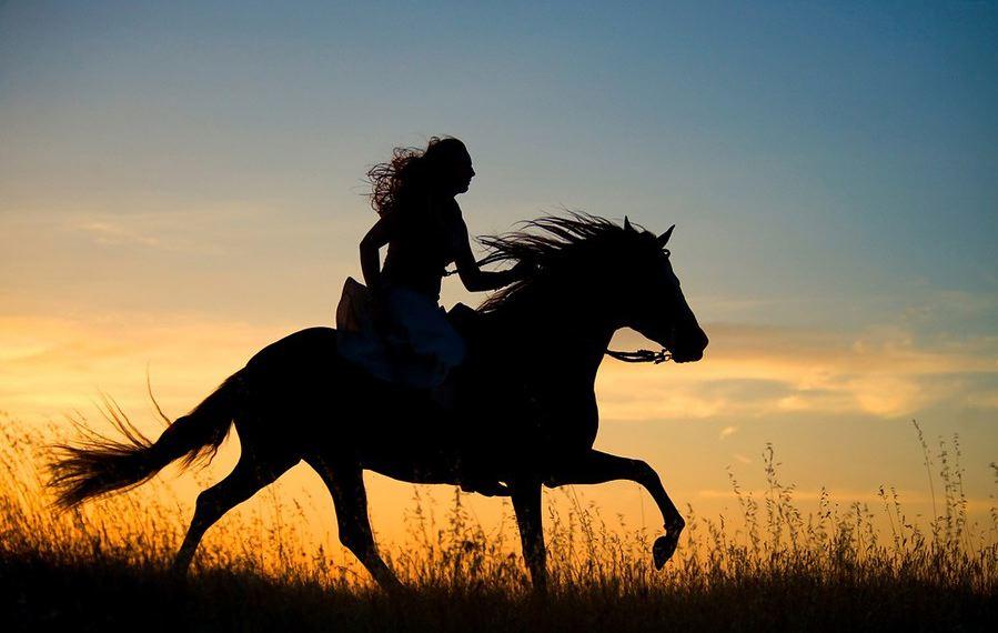 21-09_equitazione2